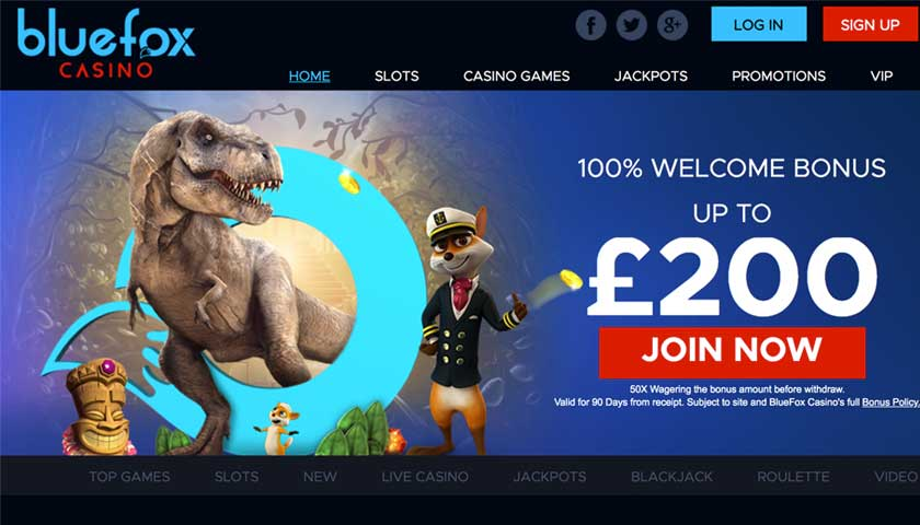 bluefox live casino UK